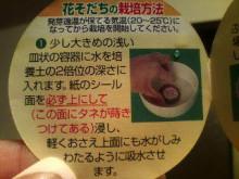 新潟市ネイルサロン aura pro ~megumi流 ネイルライフ~-20100411203909.jpg