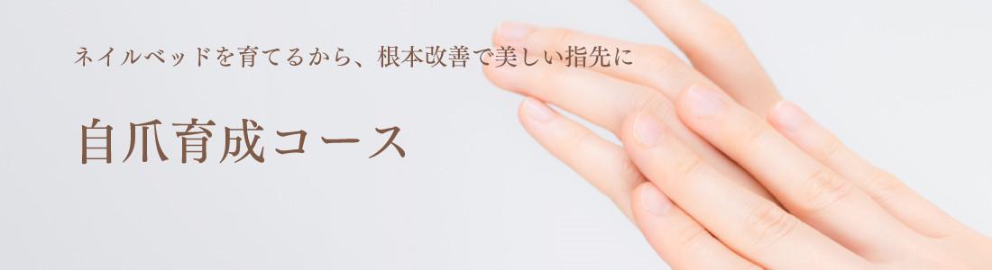 ネイルベッドを育てるから、根本改善で美しい指先に。自爪育成コース